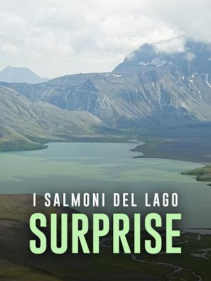 I salmoni del lago Surprise - RaiPlay