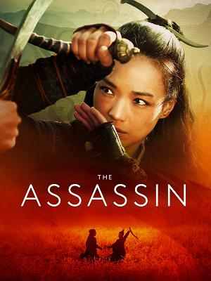 The Assassin - RaiPlay