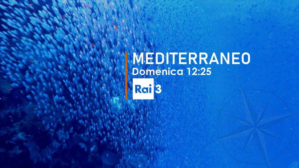 Rai 3 TGR Mediterraneo