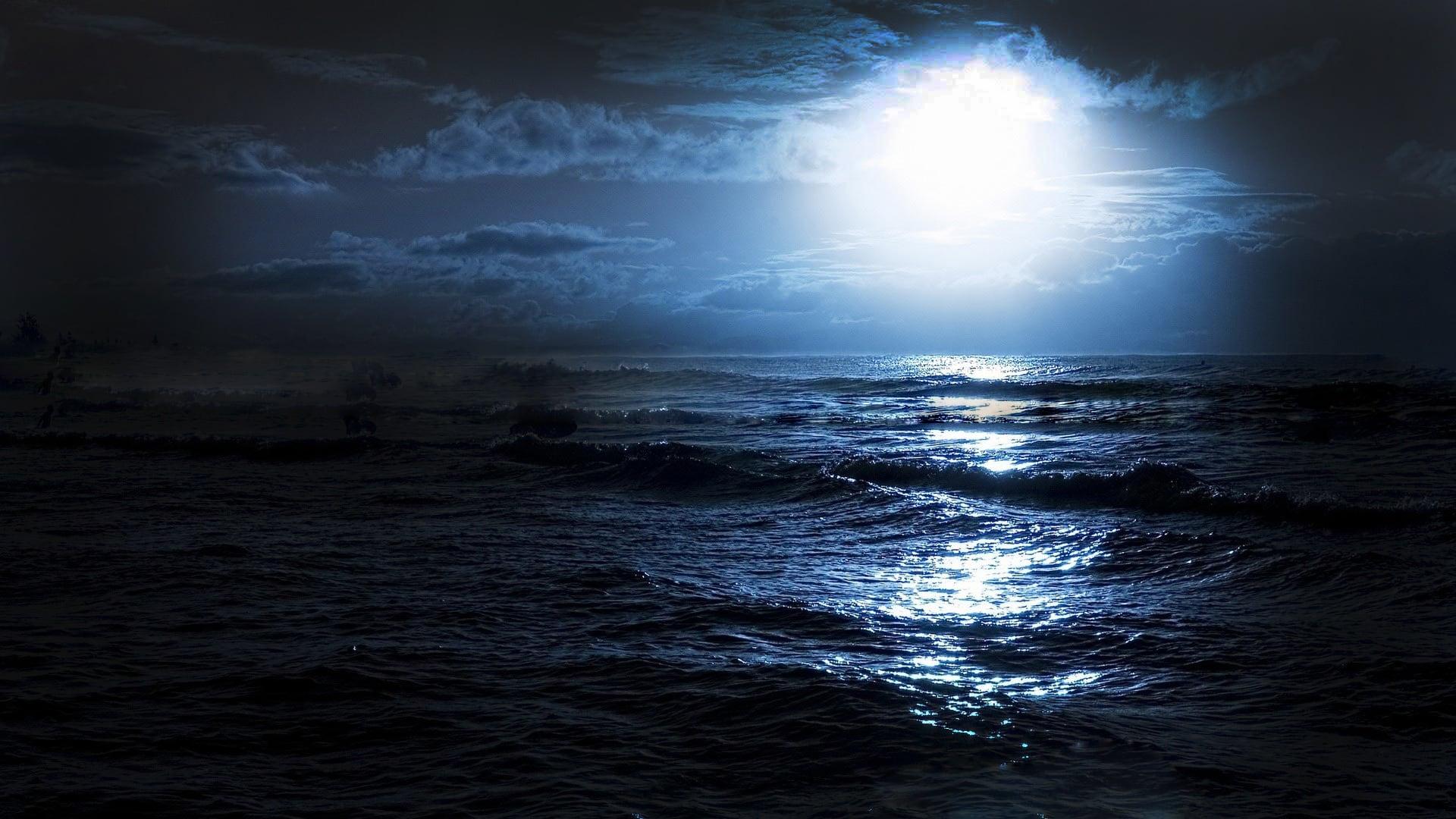 Rai Storia Uomini del mare - Ray del Mare di Cortez