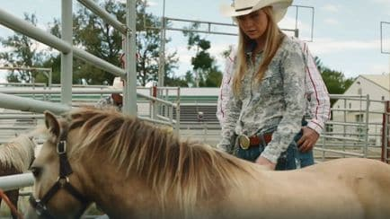 Heartland - Cavalli in miniatura - RaiPlay