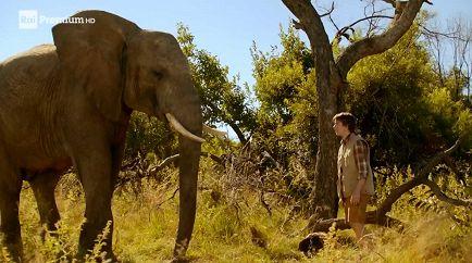 Il Ragazzo e il Grande Elefante - Film - RaiPlay